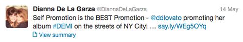 demi-lovato-self-promotion.png
